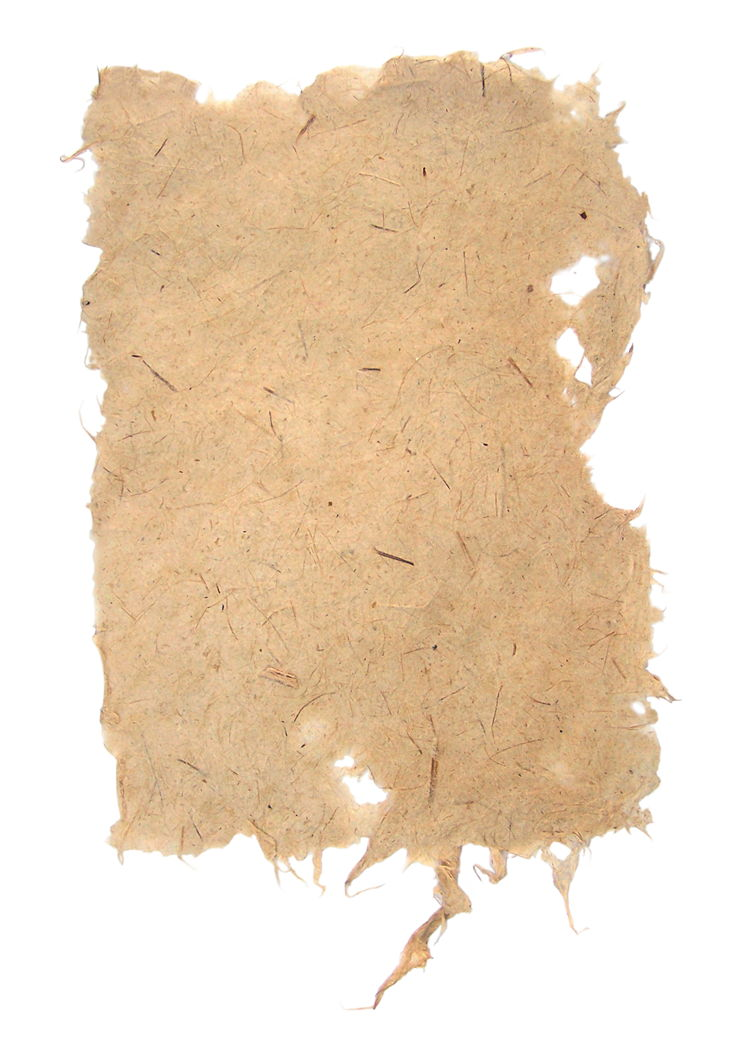 Picture of Old Ragged Paper